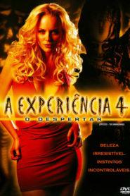 A Experiência 4