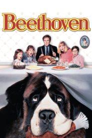 Beethoven – O Magnífico