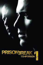 Prison Break: Em Busca da Verdade: 1 Temporada