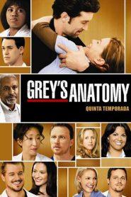 Grey's Anatomy: 5 Temporada