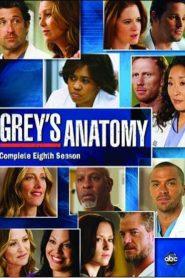 Grey's Anatomy: 8 Temporada