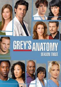 Grey's Anatomy: 3 Temporada