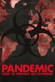 Pandemia: 1 Temporada
