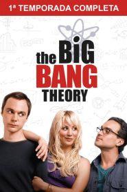 Big Bang: A Teoria: 1 Temporada