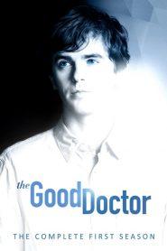 The Good Doctor: O Bom Doutor: 1 Temporada