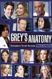 Grey's Anatomy: 6 Temporada